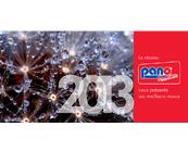 2013 : une année prometteuse