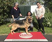 L'association Les PANO du Coeur oeuvre pour la cause animale